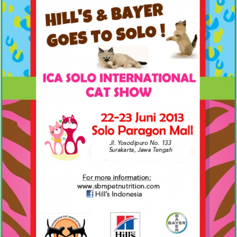 22-23 JUNI 2013:  ICA SHOW AT SOLO